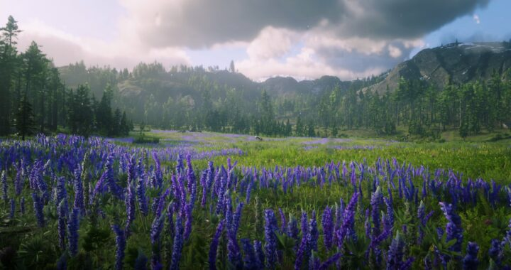 Snap Highlight: Nature in Red Dead Redemption 2