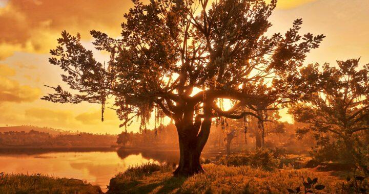 Snap Saturday: Autumn Moods